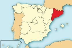 Spain arrests 9 in operation against Islamists in Catalonia