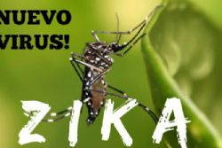 Spain Confirms 27 Cases of Zika Virus