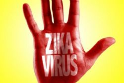 Zika Virus: What Travellers Need to Know