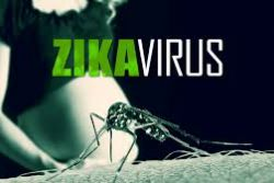 58 cases of Zika virus infection confirmed in Spain