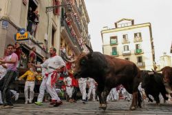 Bare-chested Pamplona marchers call for end to bull runs
