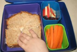 Further controversy over school lunch charges