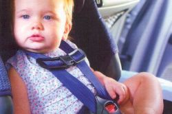 Child seatbelts not worn in 54% of fatalities