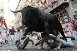 Spain's Pamplona bull run ends in stampede