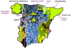 Spain overtakes France as world's second-biggest wine producer